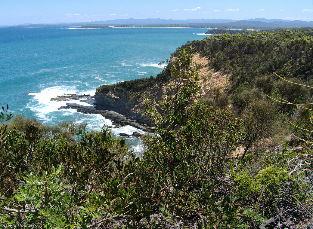 Burrewarra Point 2