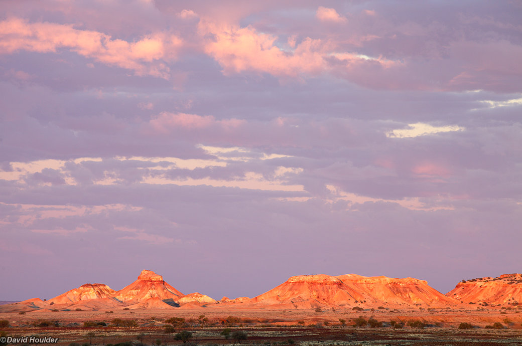 Painted Desert morning