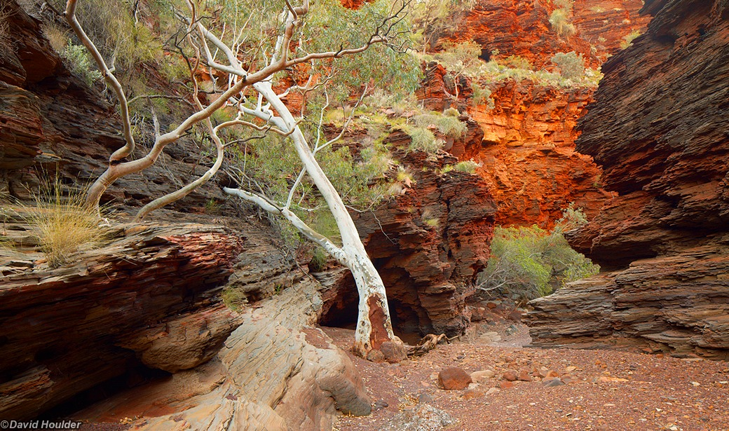 Leaving Dales Gorge