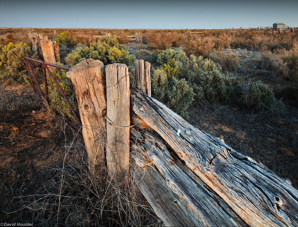 Old Mungo sheep yards